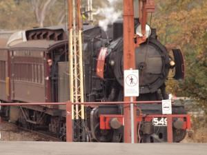 castlemaine train 1